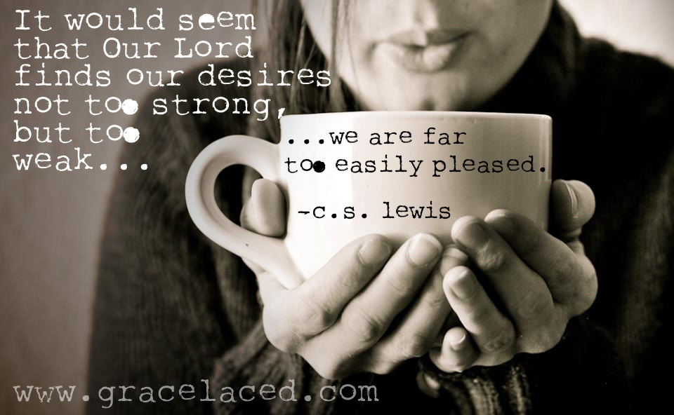We Are Too Easily Pleased...maybe it's not really time you are lacking, but desire. | gracelaced.com
